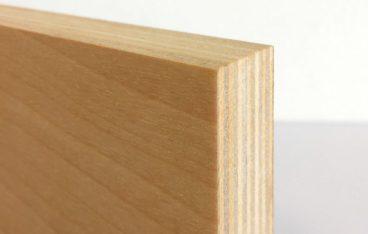 シラカバ間伐材合板の断面